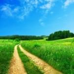 dirt-road-among-fields